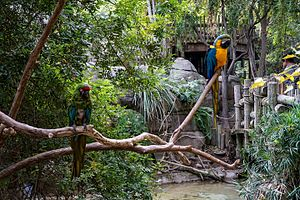 Fresno Chaffee Zoo - Colorful tropical birds in the rain forest exhibit.