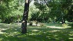 Friedhof-Lilienthalstraße-72.jpg