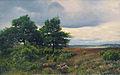 Friedrich Schwinge Heide bei Wilsede 1878.jpg