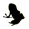 Frog icon (Vuze).png
