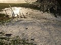 Frost pretending to be snow - geograph.org.uk - 1116135.jpg