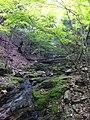Fukiaicho, Chuo Ward, Kobe, Hyogo Prefecture 651-0058, Japan - panoramio (20).jpg