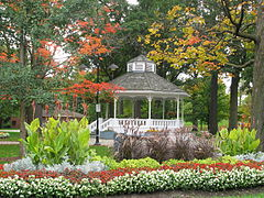 GAGE PARK FALL BEAUTY OCT 09.jpg