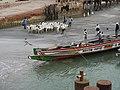 Gambia04FerryBanjulBarra033 (5400192141).jpg