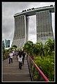Gardens by the Marina Bay-05 (8321422436).jpg