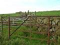 Gates on Bennan Hill - geograph.org.uk - 246980.jpg