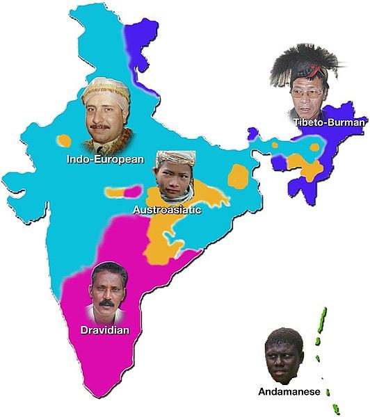 Indian language families