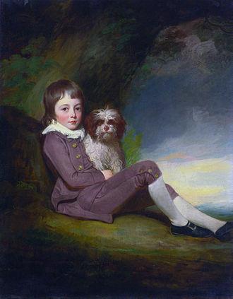 George Greville, 2nd Earl of Warwick - George, Lord Brooke (1772–1786) (George Romney)