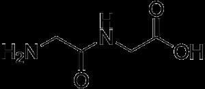Dipeptide - Glycylglycine