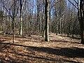 Gmina Narol, Poland - panoramio (11).jpg
