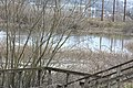 Gog-le-hi-te-wetlands 02-17 06.jpg