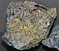 Gold and quartz (Holy Terror Mine, Keystone, Black Hills, South Dakota, USA) 1 (17194274236).jpg