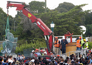 Rhodes Must Fall - Statue being removed on 9 April 2015