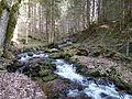 Grünburgbach.JPG