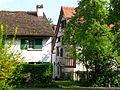Greifensee ZH - IMG 2445.JPG