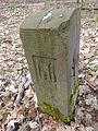 Grenzstein Waldebene Ost Nr 66.JPG
