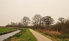 Groep bomen aan fietspad om Langweerderwielen (Langwarder Wielen). Oostkant 01.jpg