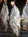 HK Sheung Wan 李陞街 Li Sing Street 掛咸魚 Hanging 3 dried fishes July-2011.jpg