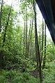 Hajnówka, Poland - panoramio (15).jpg