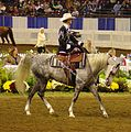 Half Arabian Ladies Western Sidesaddle (2668751289).jpg