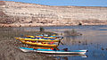 Hare kayaks.jpg