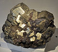 Harvard Museum of Natural History. Pyrite. Elba, Livorno, Tuscany, Italy (DerHexer) 2012-07-20.jpg