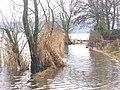 Haveluferweg Unter! (Havel Shore Way Flooded!) - geo.hlipp.de - 31726.jpg