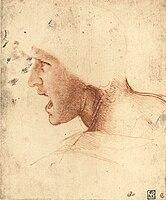 Head of a Warrior - Da Vinci 2.jpg