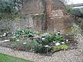 Herb Garden by London Wall - geograph.org.uk - 643308.jpg