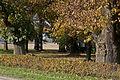 Herbst Rurtal 1.jpg