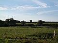 Hermitage, pastureland - geograph.org.uk - 565085.jpg