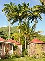 Hermitage Plantation Inn, Nevis - panoramio (7).jpg