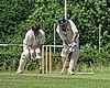 Hertfordshire County Cricket Club v Berkshire County Cricket Club at Radlett, Herts, England 016.jpg