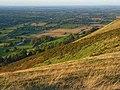 Hillside, Caer Caradoc - geograph.org.uk - 1006468.jpg