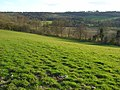 Hillside above Watlington - geograph.org.uk - 756080.jpg