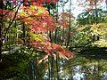 Historic Monuments of Ancient Kyoto (Kyoto, Uji and Otsu Cities)-122738.jpg