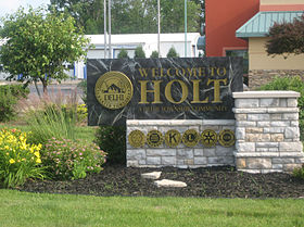 Holt, Michigan Entrance Sign.jpg