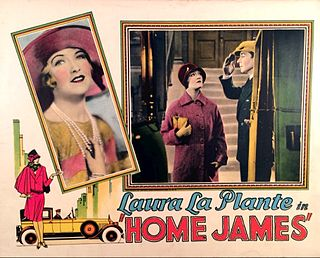 1928 American silent comedy film directed by William Beaudine