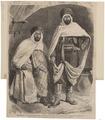 Homo sapiens - Arabier, Algerije - 1871 - Print - Iconographia Zoologica - Special Collections University of Amsterdam - UBA01 IZ19400193.tif