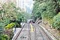 Hong Kong - panoramio (100).jpg