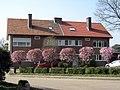 Houthalen - Ingenieurswoningen Beukenstraat 11-13.jpg