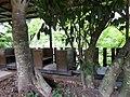 Houtong Leisure Park 侯硐坑休閒園區 - panoramio (2).jpg