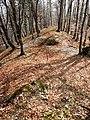 Hrebeň Rochovice - panoramio.jpg
