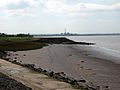 Humber Bank - geograph.org.uk - 46163.jpg