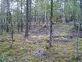 Hummelmoraberget, klapperstensvallar, 2015k.jpg