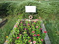 Hungarian soldiers' grave in the Reformed cemetery, Luncani.jpg