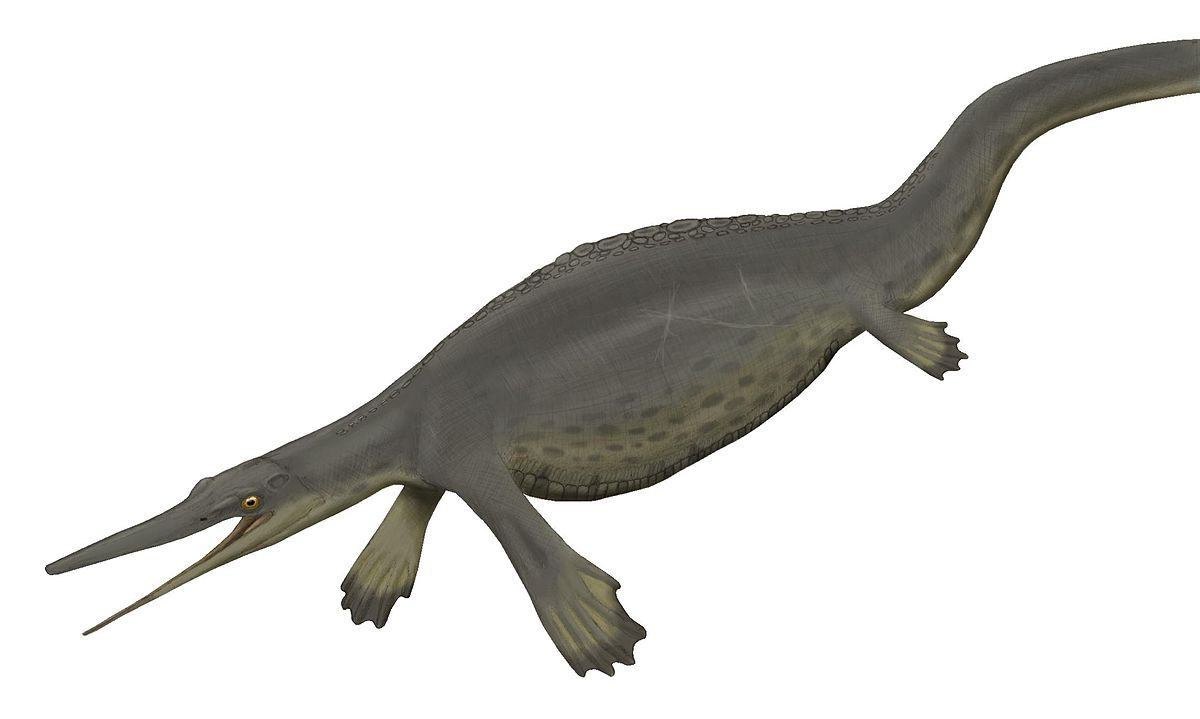 Hupehsuchus.jpg