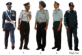 IAF Uniform.png