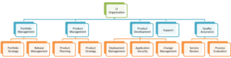 ITIL - IT organizational Structure