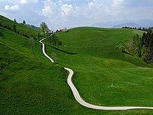 Дорога Википедия Сельская дорога в Словении